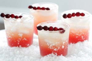CranberryVanillaCocktail