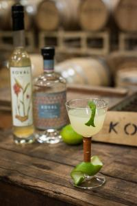 Koval Dry Gin Gimlet (photo courtesy of Koval Distillery)