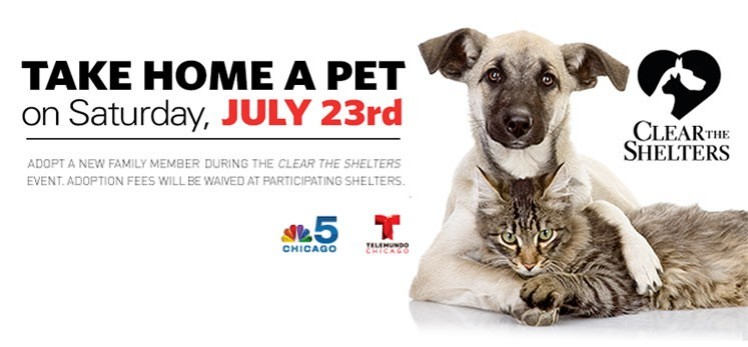 cleartheshelters2016.jpg